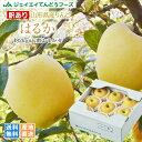 訳あり 送料無料 りんご 送料無料 JAてんどう 山形県産りんごはるか 約2kg(玉数おまかせ) ※一部地域は別途送料追加 お試し ap44