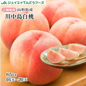 【早期予約】贈答用 山形県産白桃川中島 約5kg(12〜20玉) ※一部地域は別途送料追加 果物 フルーツ pc04