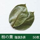 そのまま使える柿の葉 50枚 天極堂 和食 和菓子 柿の葉寿司 飾り葉 敷き葉 洗浄 一枚洗