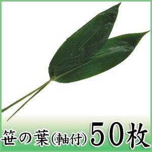 【笹の葉(軸付) 50枚】ちまきに最適な国産軸付き青笹
