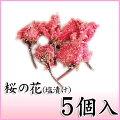 桜の花(一輪)5輪入り【桜花漬・桜茶】