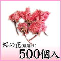 桜の花(一輪)