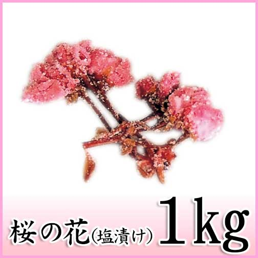 【桜の花塩漬け(関山) 1kg】塩と梅酢で漬けこんだ八重桜の花