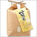 蛇紋岩米 コシヒカリ 2kg H29年産 新米 兵庫県 但馬産