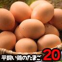 送料無料 高級卵 平飼い 卵 人気 産みたて卵 兵庫県産 2
