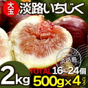 いちじく 無花果 生いちじく イチジク 2kg 500g×4