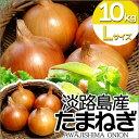 たまねぎ 淡路島 玉ねぎ 10kg Lサイズ サラダ玉ねぎ 玉葱 特選