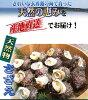 【送料無料】玄界灘壱岐産天然サザエ10kgクール冷蔵便壱岐直送!