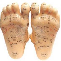針灸針灸穴位按摩足部穴位模型腿日本英語翻譯