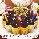 誕生日ケーキ バースデーケーキ本州 送料無料 星空のショコラ 5号? 4〜6人前チョコ チョコレートケーキ 宅...