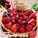 【あす楽 12時まで】誕生日ケーキ 送料無料 バースデーケー