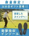 【楽天ランキング1位獲得!】TENTIAL INSOLE(テ