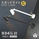 大光電機 ダクトレール用スポットライト 生鮮食品用LZS93055TBM受注生産品