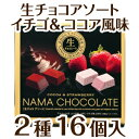 【あす楽対応】【限定 バレンタインデー チョコレート】成人用生チョコ アソート 2種16個入り…