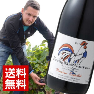 自然酵母で自然発酵!自然派ワイン!しっかりした果実味と爽やかな酸を兼ね備えたダミアン・ヌ...