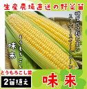 【てしまの苗】トウモロコシ苗 味来 実生苗 9cmポット 1...
