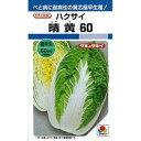 【種子】ハクサイ・晴黄60 ペレット5000粒タキイのタネ【メール便対応可】白菜