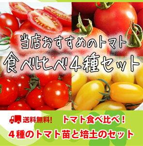 【トマト苗4種食べ比べセット】接木苗9cmポット4株と培土のお得なセット♪送料無料!