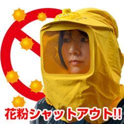 USB花粉ブロッカー ※簡易日本語説明書付き USPOLBLK ※入荷しました!【16時締切翌…