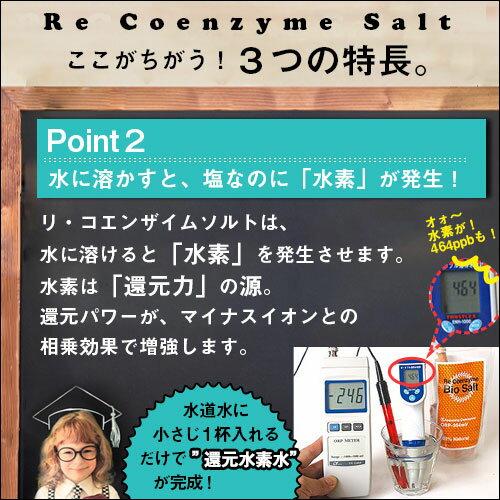 リ・コエンザイム スパソルト 浴用塩 500g