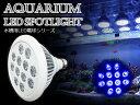 交換球 LED スポットライト 青12灯 照射角90度 水槽...