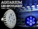 交換球 LED スポットライト 青6灯 照射角60度 水槽用照明 LED照明 LEDライト 【アクアリウム 熱帯魚 淡水魚 海水魚 水草 サンゴ イソギンチャク ミドリイシ シャコガイ 観賞魚 水槽 レイアウト】