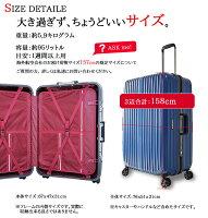 グッドデザイン賞2015受賞キャリーケーススーツケースキャリーバッグかわいい