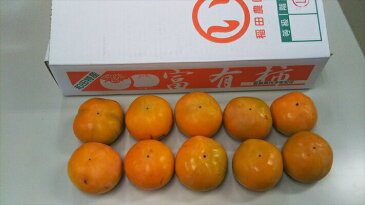 【訳あり】 愛媛県産富有柿 5kg・柿