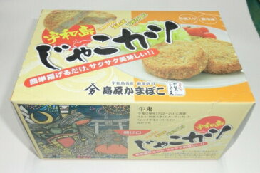 冷凍じゃこカツ 5個箱入り|53789:食品(直)