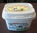 わたなべ牧場 プレミアムヨーグルト 450g×6個 乳製品 お菓子 菓子 おやつ ヨーグルト 自家製 手作り 手作りヨーグルト 乳製品 わたなべ牧場