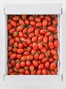 【エントリーでポイント5倍! 〜11/10 23:59まで】【産地直送】熊本県産アイコトマト 3kg ミニトマト とまとリコピン|14699:野菜