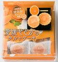 愛媛せとかのタルトケーキ(小)8個 松山お土産|490946