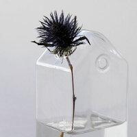 GRASSフラワーベースハンキングハウストール≪Sサイズ≫ガラス瓶花器花瓶【あす楽対応】
