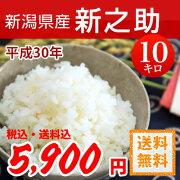 新潟県産新之助(しんのすけ)白米10kg