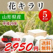 平成29年産山形県産花キラリ
