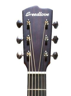 Breedlove-Discovery-Dreadnought-Acoustic-Guitar-サンバースト