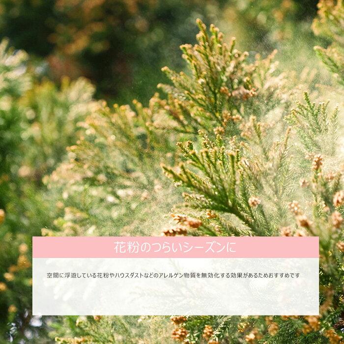 エアウォッシュウォーターAIRWASHWATER300ml+1000ml除菌スプレー消臭スプレー赤ちゃんベビーペット除菌消臭スプレー安定型次亜塩素酸ナトリウム部屋干し哺乳瓶ノロウィルスインフルエンザ花粉食中毒殺菌次亜塩素酸水加湿器キッチン無害TheGarden