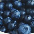 有機冷凍果物野生種ブルーベリー
