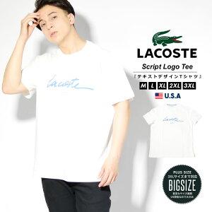 【メール便対応】LACOSTE ラコステ tシャツ メンズ 半袖 ワニ ロゴ カットソー コットン100% ストリートファッション スポーツ テニス プレゼント 贈り物 ギフト M L XL 2XL 3XL LL 3L 4L TH0503