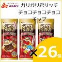 【20%OFF】赤城乳業 ガリガリ君リッチ チョコチョコチョコチップ ...