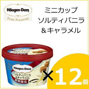 ハーゲンダッツと一般のアイスを食べ比べ