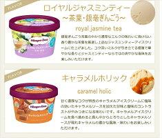 ハーゲンダッツアイスクリームミニカップ17種類から2種類選べる福袋12個(6個×2種類)セット
