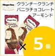 【20%OFF】ハーゲンダッツ クランチークランチ バニラチョコレートアーモンド 5個 ssof