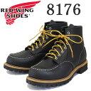 Redwing-8176