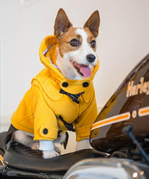 1 mile walkies(ワンマイルウォーキーズ) OAKオーク【犬服 小型犬 ウエア セレブ アウター 上着 ジャケット コート /】