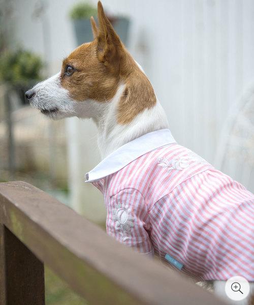 1 mile walkies(ワンマイルウォーキーズ) Zinniaジニア【小型犬 犬服 ウエア トップス シャツ セレブ】