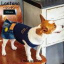 ワンマイルウォーキーズ 1 mile walkies ランタナ Lantana【小型犬 犬服 ウエア ワンピース ドレス カジュアル】 その1