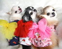 オッティ Otty +HELLOKITTY(ハローキティ) 浴衣【小型犬 犬服 ゆかた 浴衣】 その1