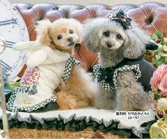 きゃんナナCanNana時計うさぎのパーカー978【小型犬犬服ウエアトップスパーカセレブ】
