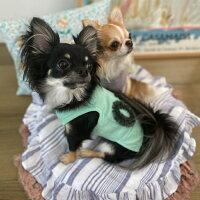 ルイスドッグlouisdogOrganicVibeSleevelessTee【小型犬犬服ウエアトップスTシャツタンクセレブ】